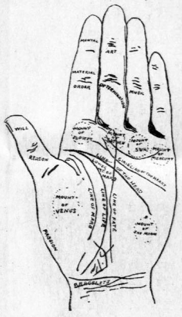 "Image of a palm, with all of the lines on the palm drawn and labeled, indicating the ""line of fate,"" ""line of life,"" ""line of mars,"" etc."