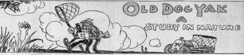 "Clipping shows the title block for a comic strip called Old Dog Yak. This particular comic is titled ""Old Dog Yak, A Study in Nature,"" and depicts Old Dog Yak in a field with a butterfly net and a bottle of chloroform."